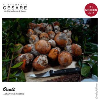 ovuli al ristorante Cesare